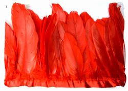 Verenband, ca. 130mm hoog, 60gram per meter, rood
