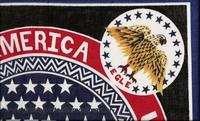 Bandana American Eagle